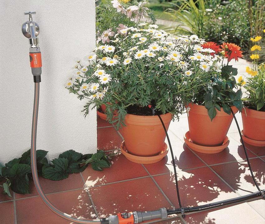Автополив можно также использовать и для уличных растений в горшках