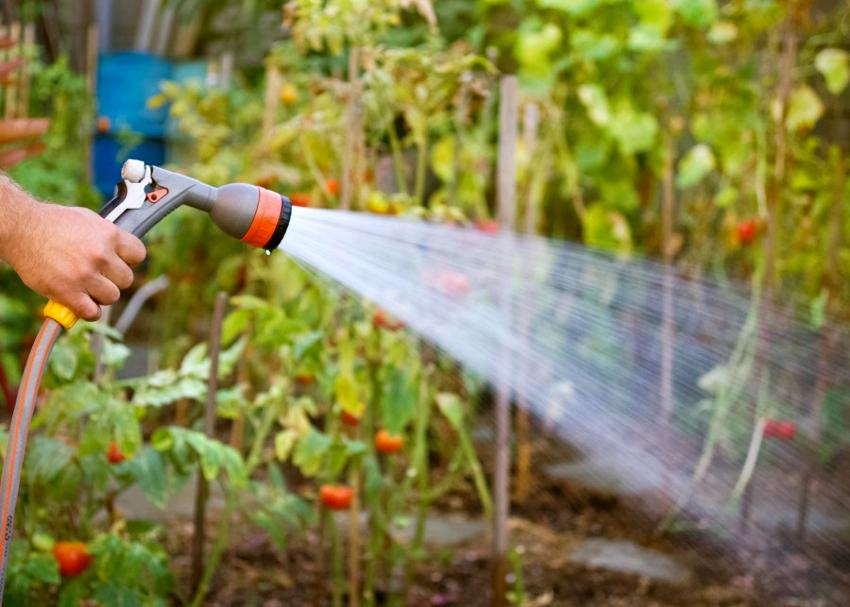 На напор воды влияет не только автоматика, но и состояние фильтров, воздушное давление в системе, герметичность всасывающего трубопровода